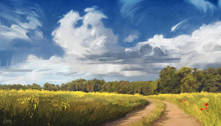 Summer Field by O-l-i-v-i