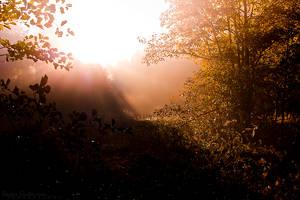 As Dawn Arrives by KasperGustavsson