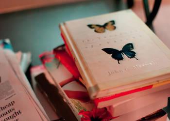 The Butterfly Effect by AMDphreak