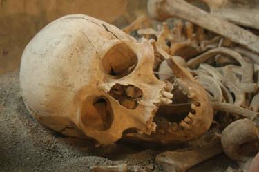 stock_image_67_skull by setenay