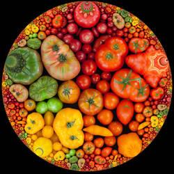 Hyperbolic Veggies by bryceguy72