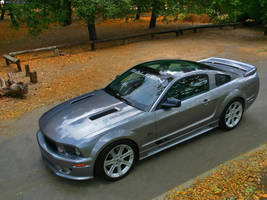Mustang Saleen by TheCarloos