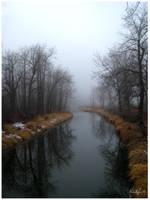 Fog by MightyMichelle