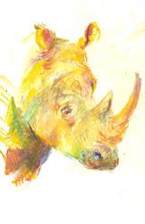 RhinoPastely by remedygrey