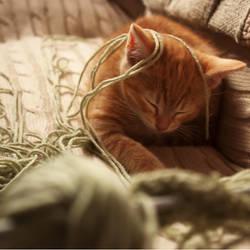 Sleepy Baby Po by Ennev