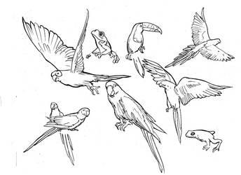 RF-animals by macart1