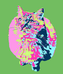 Saturday Cat Fanart (February 17th) by Catifornia