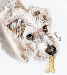 Watercolor Puppy Portrait for a friend's cute Dog by Catifornia