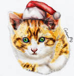 Christmas Style Portrait for a Kitten friend by Catifornia