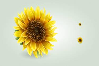 Sunflower icon by hbielen