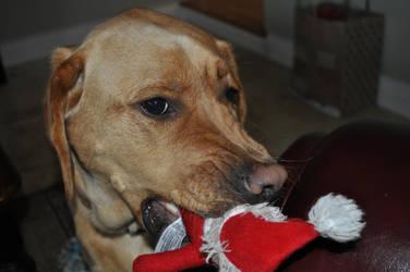 Jack love Santa by rlollis