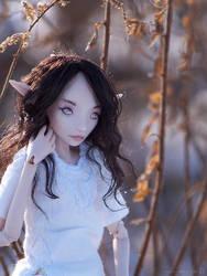 Eirwyn 2 by ladymeow