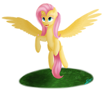 Fluttershy by Speed-Chaser