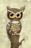 Chibi owl by FragileWhispers