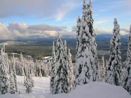 Snow stock 003 by SnaffledChestnut