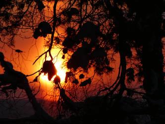 Sun. by Makkex