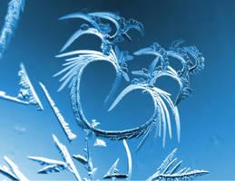 Love of Winter by FramedByNature