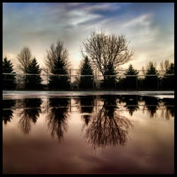 Reflections at the Courts by FramedByNature