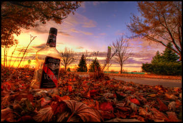 Vodka and Education by FramedByNature