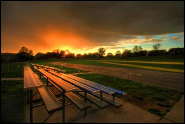 Sunset Spectators by FramedByNature