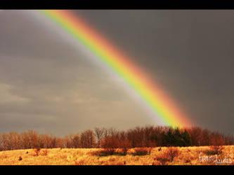 Backside Spectrum by FramedByNature