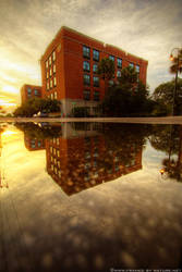 Savannah Reflections II by FramedByNature