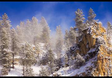 Deep Blue Blizzard II by FramedByNature