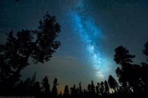Sentinels of the Stars by FramedByNature