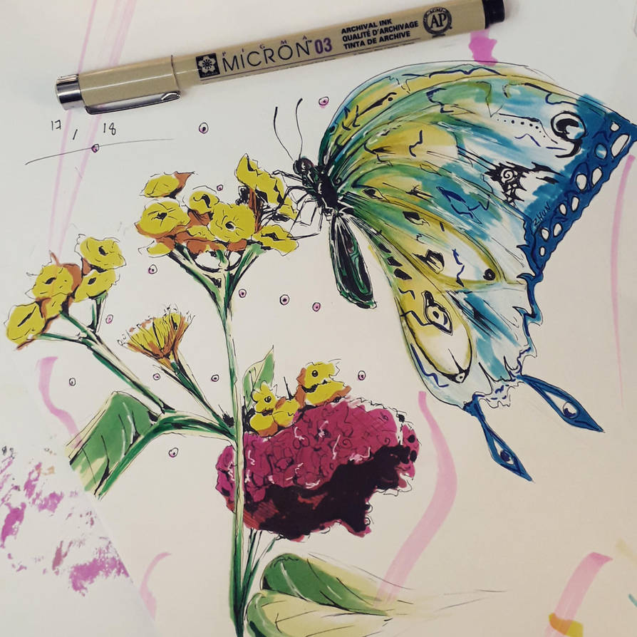 swallow by WinterDoorBell-zhun