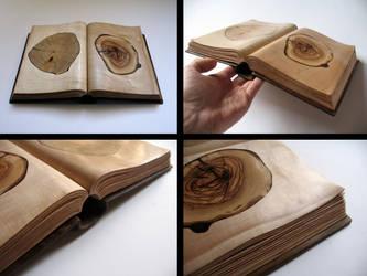 Libro di segno by Arcangelo-Ambrosi