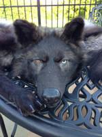 Badass Wolf WIP by x3TheBrokenArtistx3