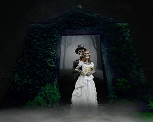 Skull Wedding by BA666