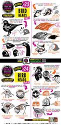 How to draw BIRD HEADS tutorial by STUDIOBLINKTWICE