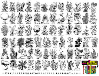 70 PLANT, FLOWER and TREE REFERENCES! by STUDIOBLINKTWICE