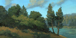 summer bank, shasta by David-McCamant