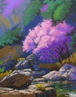 Spring Creek Study by David-McCamant