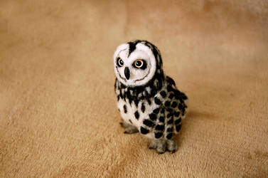 Owl III by SkojSkoj