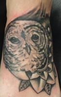 owl by PaintedPeople
