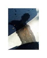 Into the shadow by martaraff