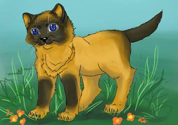 Cat gav by Nianes