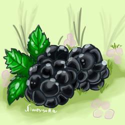 Blackberry by Nianes