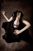 Black Swan II by Nightshadow-PhotoArt