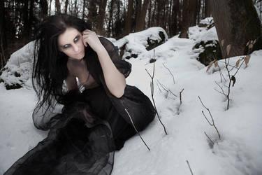 She Wolf I by Nightshadow-PhotoArt