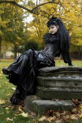 Schwarze Witwe by Nightshadow-PhotoArt
