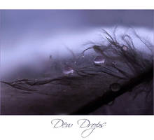 Dew Drops by cupcakeart