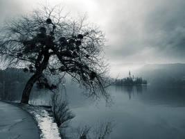 Distant Fog by d-minutiv