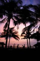 After Sunset by Jennelizabeth
