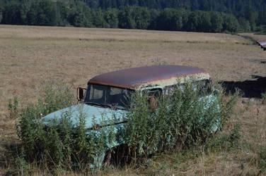 Field Wagon by humloch