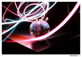 Lightpaint by insp1ration