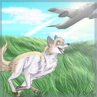 Plane Chaser by Daesiy